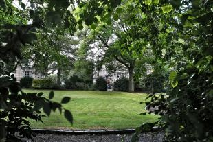 A public park, viewed from behind trees