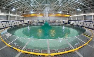 Flowave Ocean Research Centre