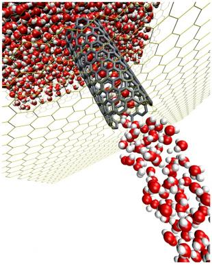 A Molecular Simulation of Water Flow in a Carbon Nanotube