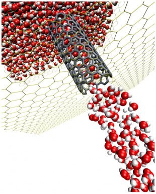 Molecular simulation of water flow in a carbon nanotube