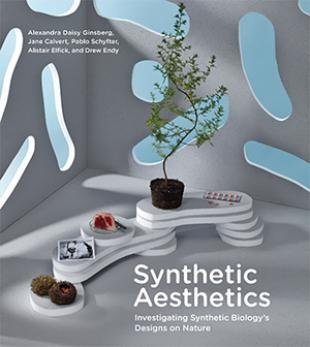 Synthetic Aesthetics - Book Cover