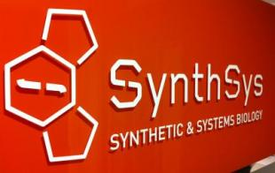 SynthSys, Synthetic and Systems Biology