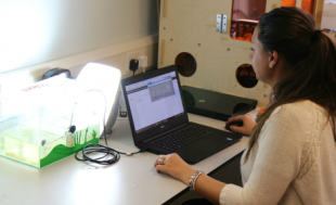 CDT-ISM Researcher with laptop in the lab