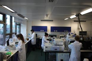 Environmental Engineering Laboratories at the School of Engineering